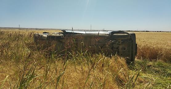 Şanlıurfa'da otomobil buğday tarlasına yuvarlandı
