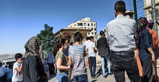 Şanlıurfa'da 50 bin öğrenci ter döktü