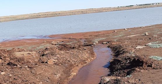 Viranşehir'de Balıklar ölmesin diye kuyudan Gölete su takviyesi