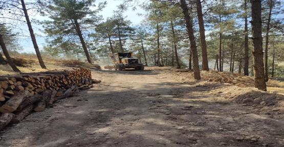 Şanlıurfa'da Orman yangınlarına karşı yol yapıldı