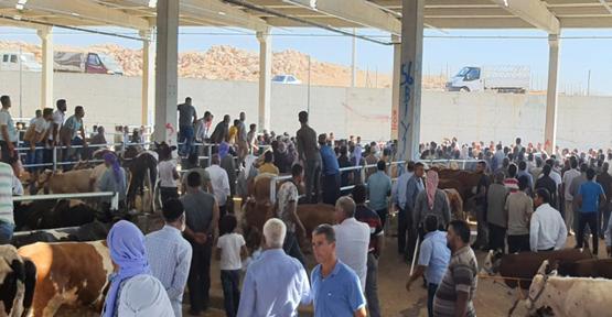 Urfa'da iki grup arasında kavga, 2 yaralı