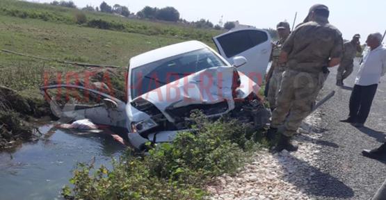 Suruç'ta otomobil at arabasını çarptı