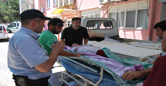 Tedavileri Urfa'da Yapılıyor