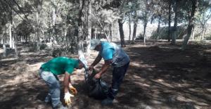 Viranşehir Belediyesinden Yangınlara Karşı Orman Temizliği