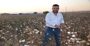 Urfa'da pamuk tarlasından avukatlık ve doktorluğu uzanan başarı öyküsü