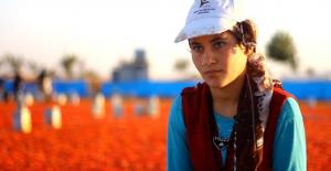 Şakha, Kısa Film Yarışmasında Mansiyon Ödülü Aldı