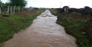 Yağmur Nedeniyle Dereler Taştı