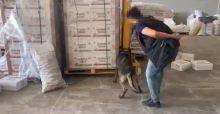 Şanlıurfa'da bisküvi kutularında kaçak sigara ele geçirildi